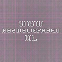 www.basmaliepaard.nl- Adolescentenliteratuur op de lijst in bovenbouw havo/vwo
