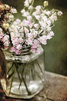 Grunge flowers in a vase photography flowers art grunge