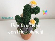Spiegazione della pianta grassa all'uncinetto con i fiori bianchi - YouTube