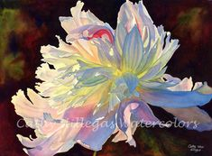 June Light This is a quality giclee print made from an original watercolor painting by Cathy Hillegas. It depicts a white peony, dramatically lit