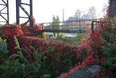 Parc sur friche industrielle / Bâtiments du patrimoine mis en avant / Duisburg Nord, Allemagne