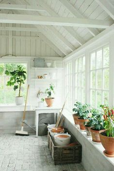 Dream Garden Shed Greenhouse Shed, Greenhouse Gardening, Cheap Greenhouse, Indoor Greenhouse, Greenhouse Vegetables, Pallet Greenhouse, Greenhouse Wedding, Gardening Tools, Sunroom Decorating