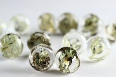 These little post earrings contain tiny specimens of lichen, preserved in glass-like domes of crystal clear resin. Magnified slightly by the domed