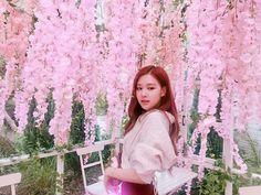 BLACKPINK Rosé on Naver