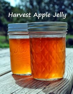 Harvest Apple Jelly - an easy recipe to preserve the taste and color of fall.