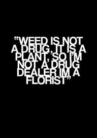"""weed is not a drug, it is a plant, so i'm not a drug dealer im a florist"" hahaha this is awesome! ahahhaahah im dying xD Weed Quotes, Funny Quotes, Stoner Quotes, Stoner Humor, Weed Humor, Random Quotes, Puff And Pass, Smoking Weed, Medical Marijuana"