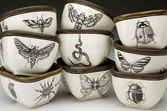 Cabinet of curiosities / wunderkammer / antique vintage illustration cups home decor inspiration