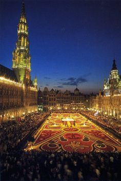 Brüksel - Çiçek Halı Festivali