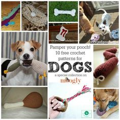 Gone to the Dogs! 10 FREE crochet patterns for pampered pooches - crafty collection on Mooglyblog.com! Crochet Gifts, Crochet Wool, Free Crochet, Crochet Pet, Pet Clothes, Dog Coats, Pet Toys, Crochet Animals, Diy Stuffed Animals