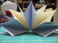 Libro estrella