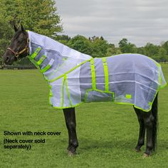 Dura-Tech® Ripstop Nylon Mesh Bellyband Fly Sheet Poor Hera needs one!
