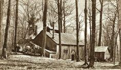 Cabane vers 1930