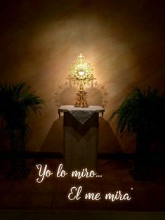 Amor Quotes, Let It Flow, Divine Mercy, Catholic Prayers, God Is Good, Communion, True Love, Blessed, Faith
