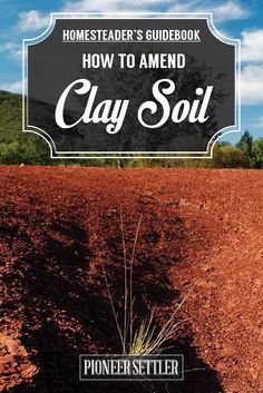How to Amend Clay Soil - The Homesteader's Guide   Gardening Ideas and Tips by Pioneer Settler at http://pioneersettler.com/how-to-amend-clay-soil/