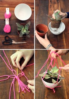 Macramé hanging planters in window - cute and a good way to use up some yarn!