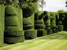 topiary16