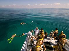 http://adventure.nationalgeographic.com/adventure/trips/family-trips/islamorada-florida/ #outdoors, #campinggear, #fishinggear, #ClimbingGear