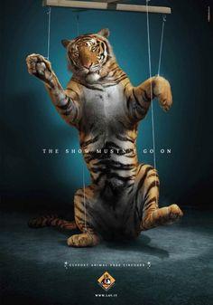#Pubblicità in aiuto degli #animali: una voce a chi non ce l'ha