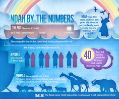 Noah By the Numbers