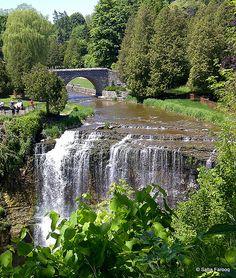 Webster Falls, Hamilton, On, Canada