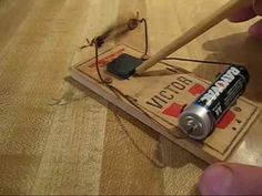 How to build a simple battery powered electric motor for free. No blueprints needed. Leave a comment? Electric Mouse Trap, Kids Yard, Mouse Traps, Home Schooling, Useful Life Hacks, Electric Motor, Pest Control, Arduino, Woodworking Tools