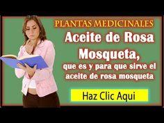 Aceite de Rosa Mosqueta, que es y para que sirve el aceite de rosa mosqueta. - YouTube