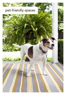 #DashandAlbert Cricket Indoor/Outdoor Rug. Crafted of eco-friendly recycled materials, this woof-worthy durable beauty is both pet and people friendly.