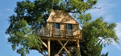 Treehouse at Labro. A romantic treehouse for two in the grounds of a relaxed and cool château. Chic decor, Champagne, and a chandelier....