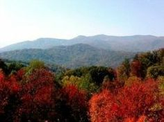 Make Gatlinburg Cabins Your Four Season Destination •  There is something unique and beautiful about each season and you can experience them all here in the Smokies. Click the Pin to read more!