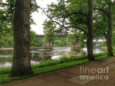 A View Across The River From The Avenue Of Limes Print By Joan-violet Stretch
