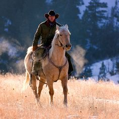 Cowboy rides the palomino up out of a Wyoming canyon.