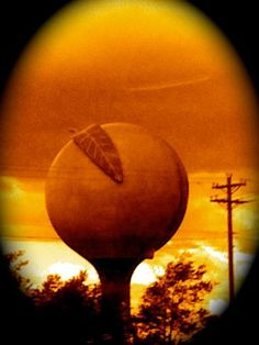 In his dreams, all water towers were shaped like pitted fruits. Curious, yet fascinating.