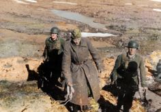 Zapadnaya Litza. Murmansk region May 1942