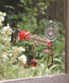 One-Tube Window Wonder Bird Feeder