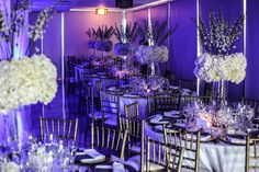 Award winning Miami Wedding Photographers and videographers. Ranked in top Prices and packages for any size wedding. Miami Wedding Venues, South Beach Miami, Same Love, Lgbt, Wedding Photography, Photoshoot, Ceiling Lights, Type