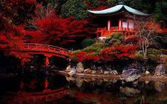 Pagoda, híd, tó, ősz, tükröződés, kyoto, japán