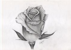 Tattoo design of rose bud
