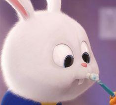 Cute Bunny Cartoon, Cute Cartoon Images, Cute Cartoon Characters, Cute Cat Gif, Cartoon Pics, Cute Cartoon Wallpapers, Funny Phone Wallpaper, Cute Disney Wallpaper, Snowball Rabbit