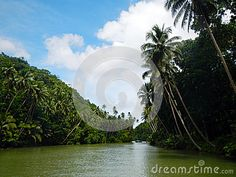 Loboc River Cruise - Download From Over 24 Million High Quality Stock Photos, Images, Vectors. Sign up for FREE today. Image: 31818540