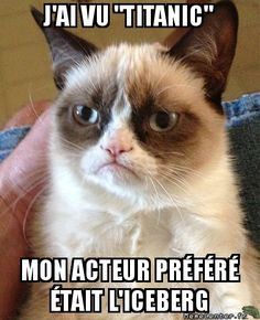 French meme database.... Perfect for warm ups