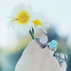 Rings + flowers from UOSanDiego.