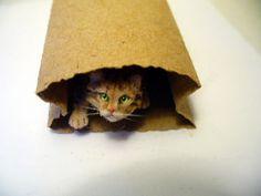 Dollhouse Miniature Peeking Tabby  Cat  *Handsculpted*