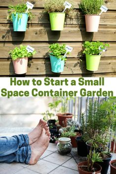 Learn how easy it can be to start a small space container garden! This easy tutorial will help you start an indoor garden with planter box and raised beds or a small container garden on your patio or backyard. Now you can start a small apartment garden or a vertical garden in your kitchen for decor and function! #indoorgarden #smallgarden #containergarden #planterbox Growing Herbs, Growing Vegetables, Raised Garden Beds, Raised Beds, Gardening For Beginners, Gardening Tips, Indoor Garden, Garden Pots, Large Planters