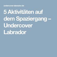 5 Aktivitäten auf dem Spaziergang – Undercover Labrador