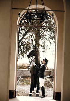 www.lacavalieremasquee.com / Kingsland Dressage