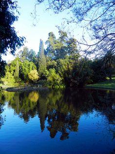 Melbourne, Australia Largest Countries, Countries Of The World, Melbourne Australia, Australia Travel, Places Around The World, Around The Worlds, Beautiful Places, Beautiful Pictures, Land Of Oz