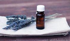 Kokosový olej s levandulí - nejuniverzálnější mix pro péči o pokožku (jednoduché recepty na přírodní DIY kosmetiku)