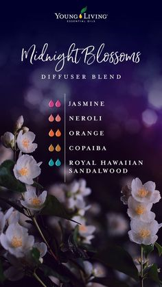 What's more exciting than nighttime adventure when the clock strikes 12? Nothing but this Midnight Blossoms diffuser blend! Add together the blossoming aroma of Jasmine to the bold scents of Orange and Neroli with a bit of balmy Royal Hawaiian Sandalwood and warm Copaiba essential oils to help your tired eyes leave time for a little fun. #home #essentialoils #diffuserblends #yleo