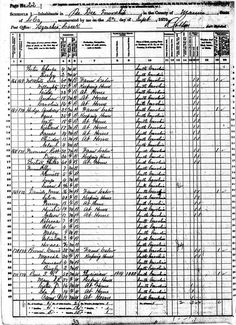 """1829 'Bill of Sale' for the purchase of a 17-year old """"negro girl"""" named Willoby....1880 Willoughby Census Transcript"""