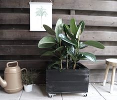 Types Of Urban Gardening - Urban Gardening Garden Yard Ideas, Garden Projects, Garden Pots, Organic Gardening, Gardening Tips, Santa Ornaments, Rooftop Garden, Garden Inspiration, Planting Flowers